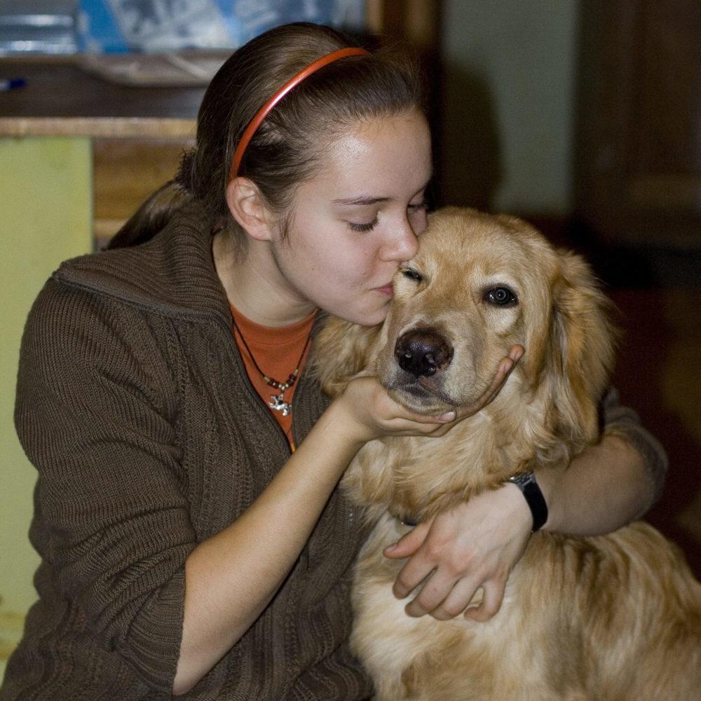 """""""Странности"""" поведения собак"""