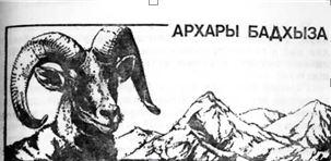 5  Архары Бадхыза (1)