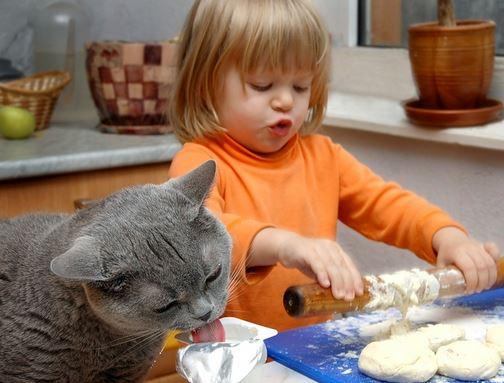 кошка с ребенком