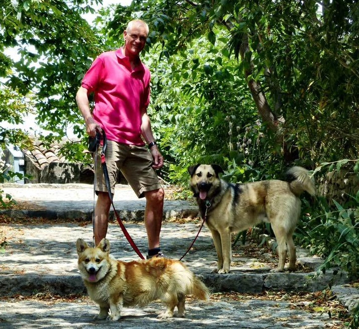 """Бобик, родился и жил на улице около двух лет, был таким """"Поселковым псом"""", сейчас живет в Голландии. Породистый корги - друг Бобика и первая собака в семье их хозяев."""