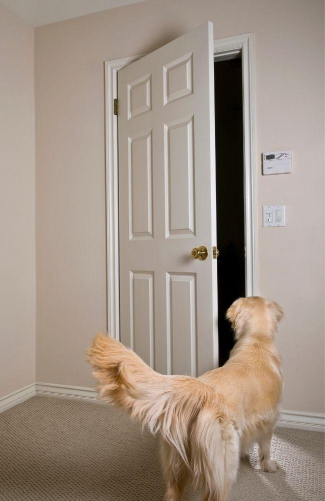 Упражнения с дверями